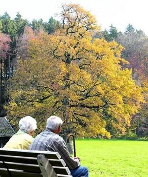 bel-automne-300.jpg
