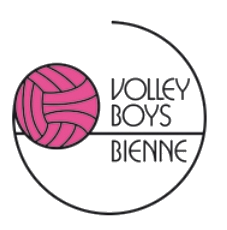 logo-volleyboys.png
